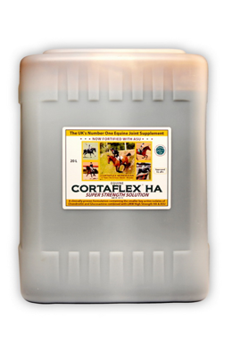 CORTAFLEX HA Super Strength Solution 20l (zapas na 44 m-ce)
